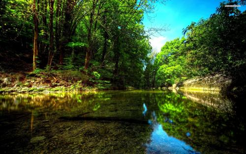 beautiful-green-river-in-the-forest-4921-1920x1200