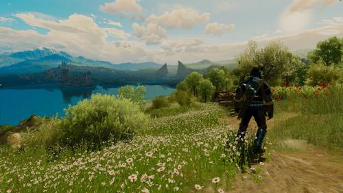 The Witcher 3 Super-Resolution 2017.10.11 - 23.57.25.81