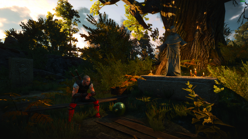 The Witcher 3 Screenshot 2018.06.07 - 01.41.26.85