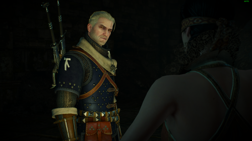 The Witcher 3 Screenshot 2018.07.01 - 01.54.48.67